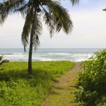 beach rates