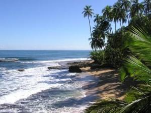 assistance beach availability